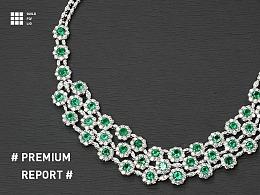 #Folio# Premium Report(II)