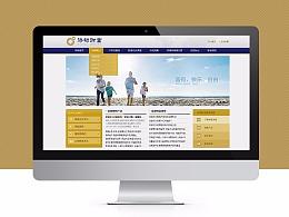 2013金融网站两个