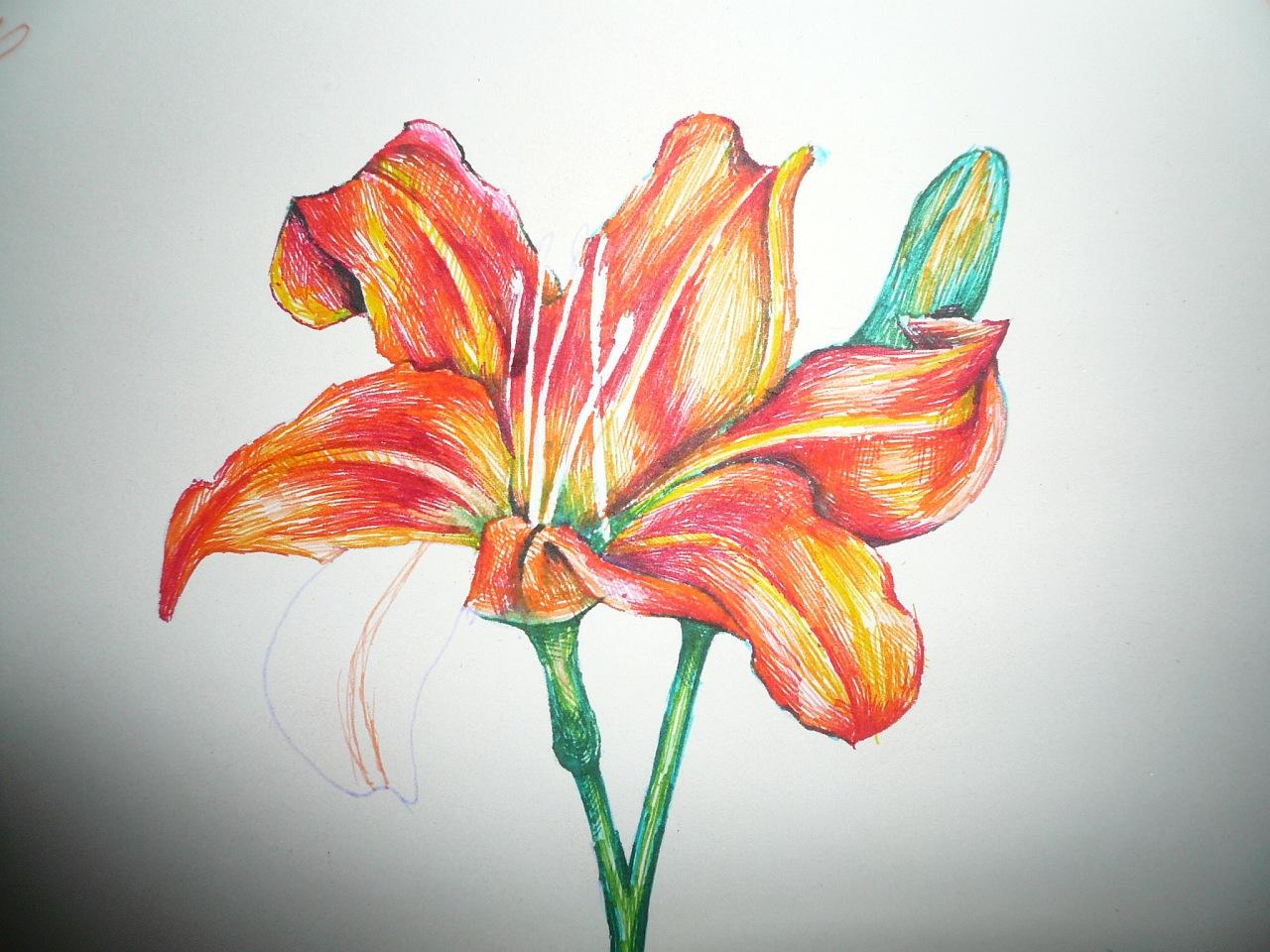 而已 用特细的水彩笔画的,随便涂鸦