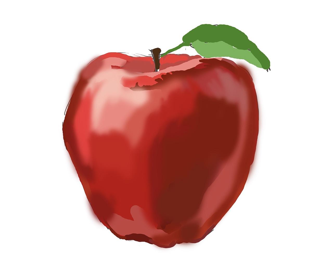 苹果手绘练习