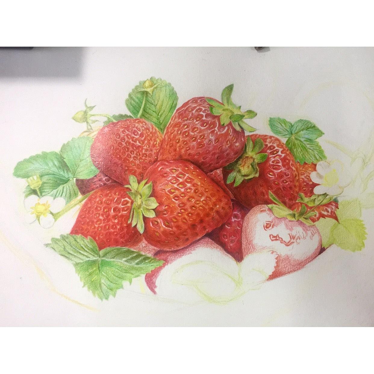 写实彩铅画-草莓图片