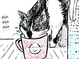 猫咪的饮水癖