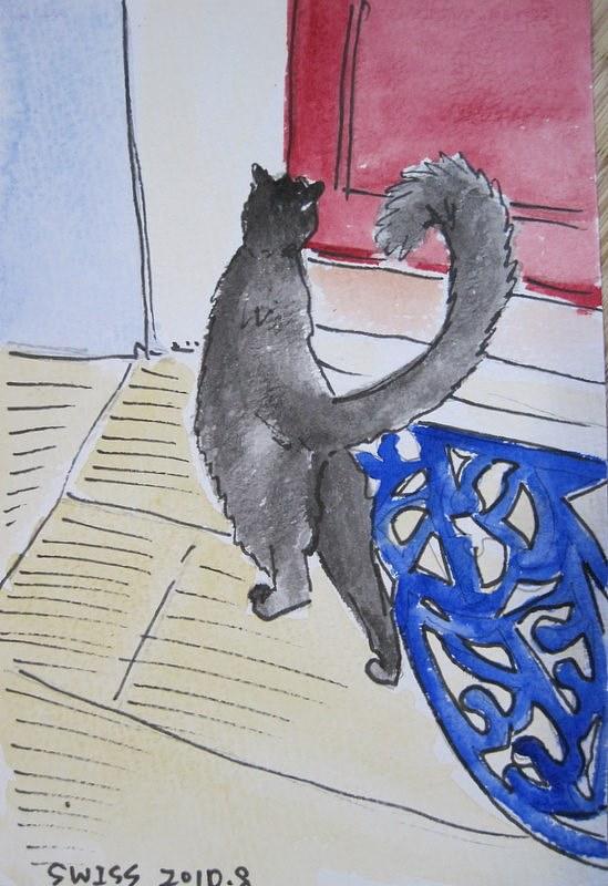 瑞士的小黑猫