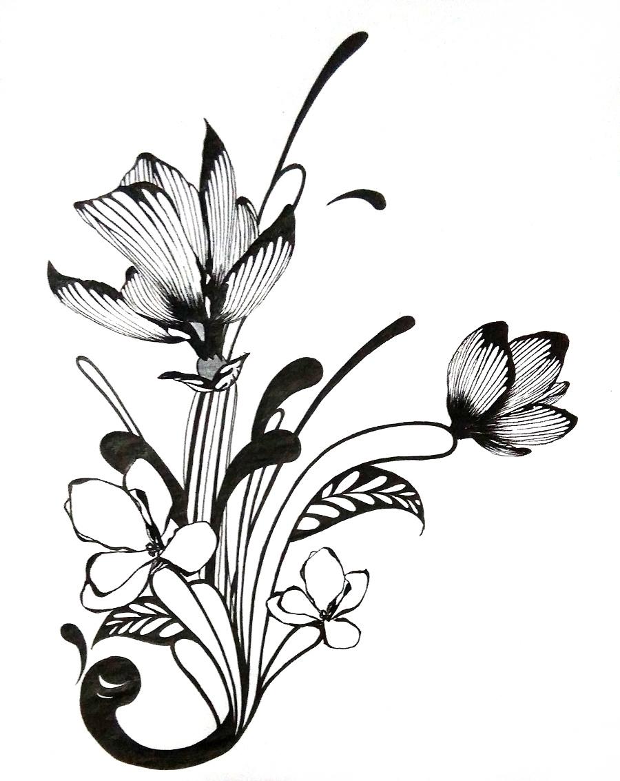 插画 手绘 黑白