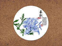 【驴大萌彩铅教程233】24节气花卉手绘图鉴—立秋蓝雪花