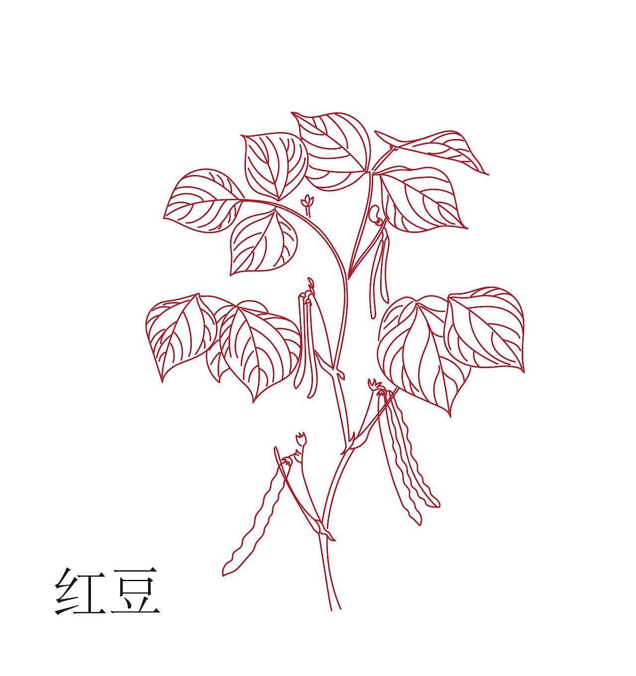 红豆唯美手绘图片