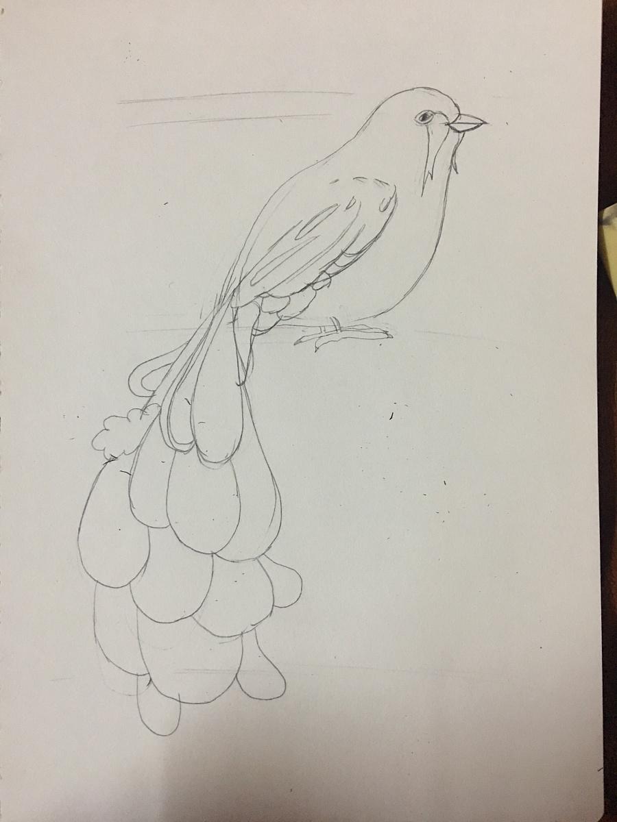黑白线条插画 鸟羽|钢笔画|纯艺术|拥抱沙滩的鱼
