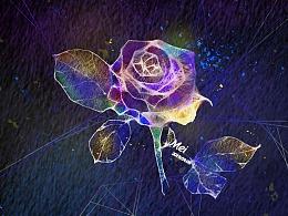 透气光感板绘练习-花卉