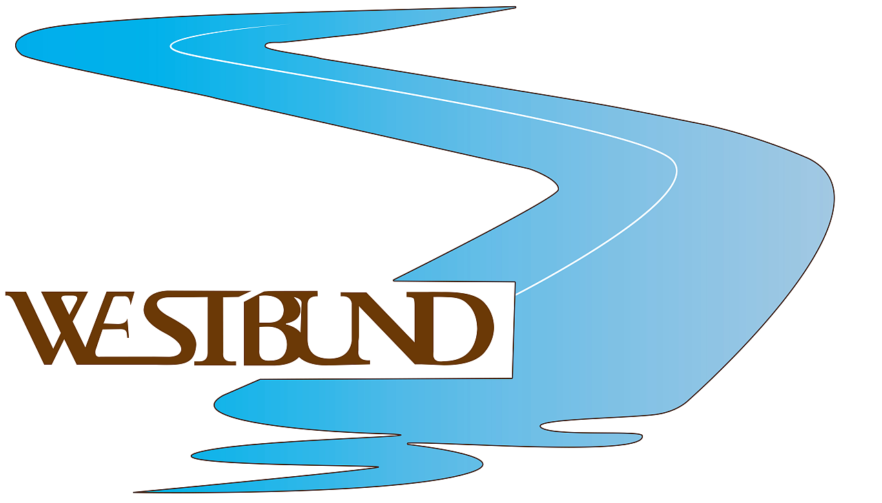 上海西岸logo设计      图片