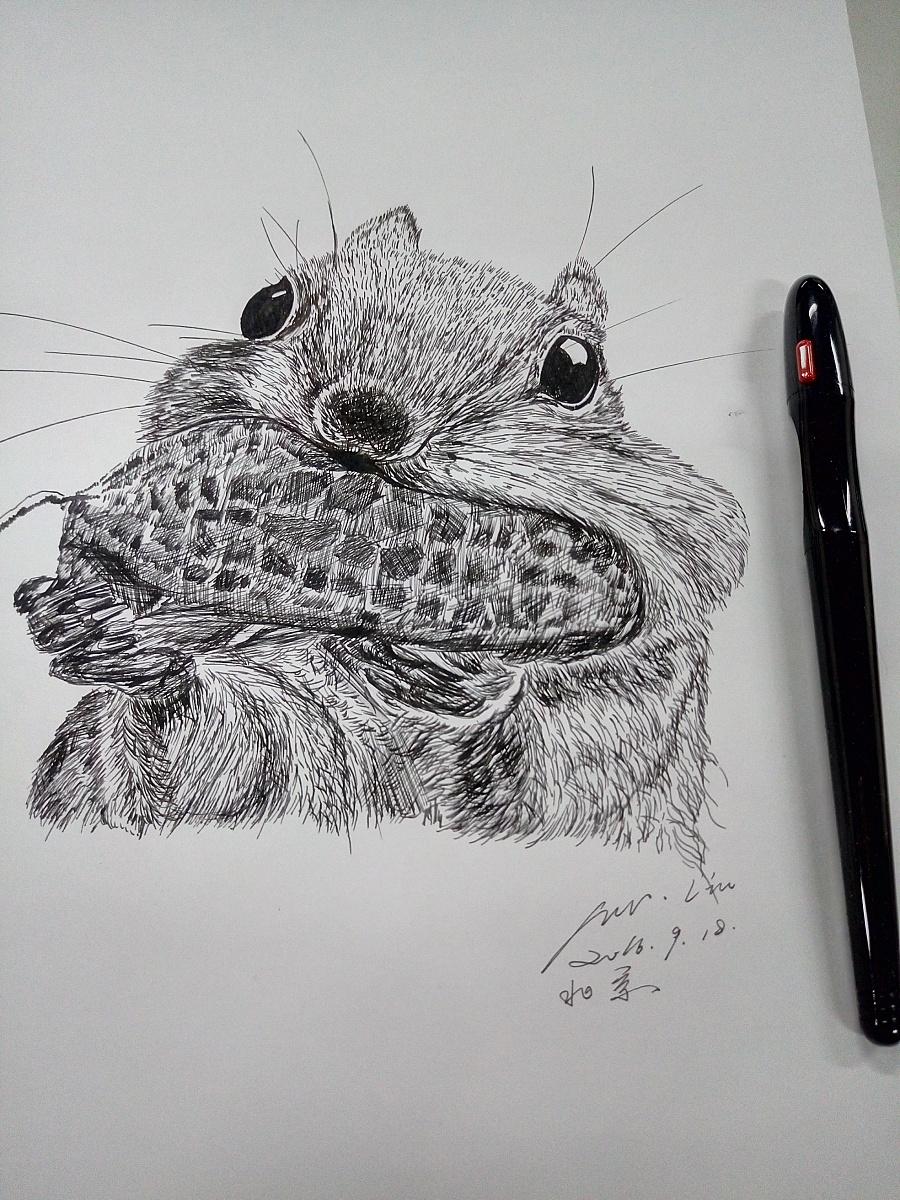 原创作品:临摹钢笔画