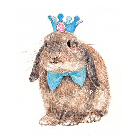 SUNRISE J的彩铅手绘 萌哒哒的兔子