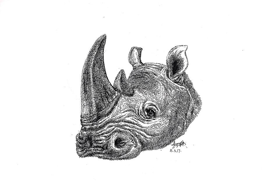 原创作品:李万海钢笔手绘动物