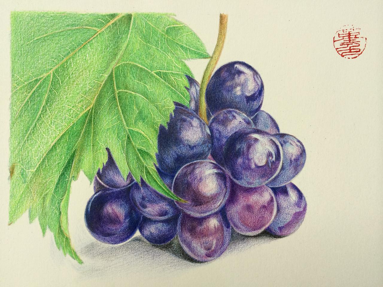彩铅手绘图片水果