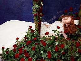 小王子和他的玫瑰花,兰奕婚纱设计