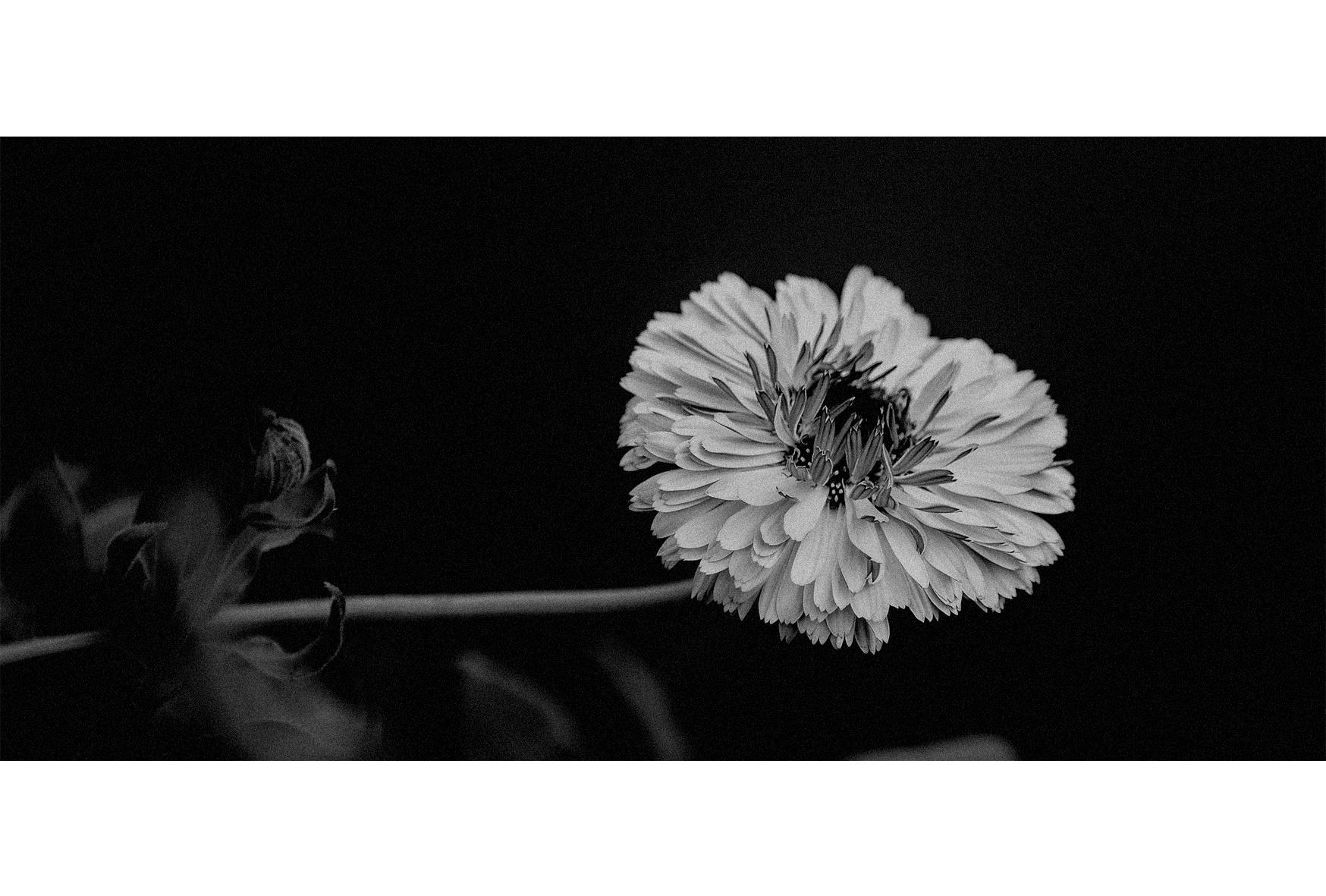 黑白光影|摄影|其他摄影|佐佐丶 - 原创作品 - 站酷
