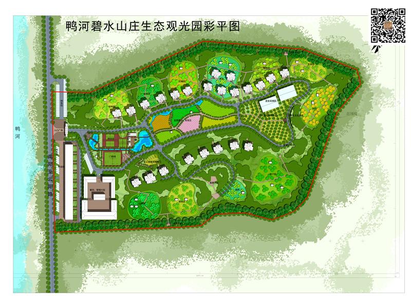 园林种植手绘平面图