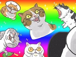 《快乐兽》猫咪搞笑表情包