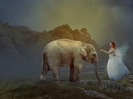 精灵与小象