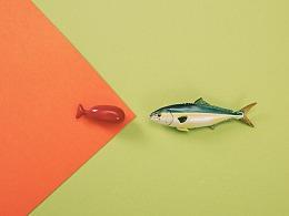 S&N | 鱼儿鱼儿,游来了