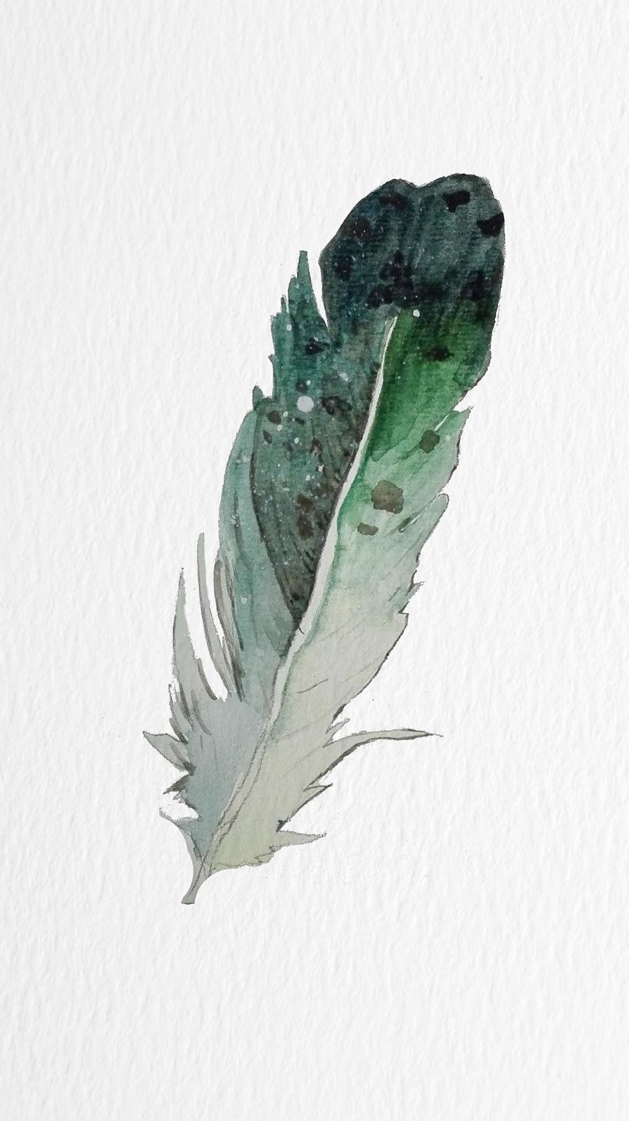 原创作品:手绘羽毛