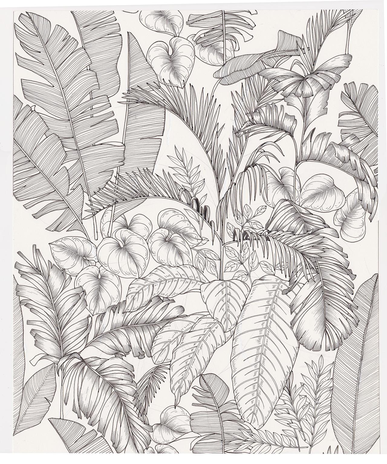 黑白花卉|纯艺术|钢笔画|bianxiaorou - 原创作品