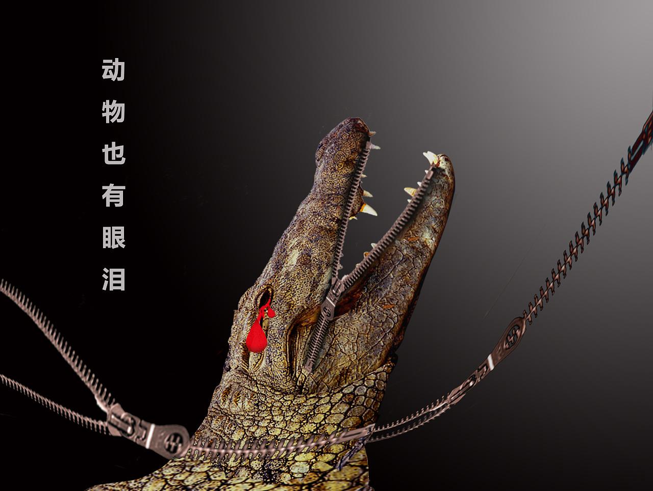 """保护动物的海报,根据""""鳄鱼的眼泪而来的"""".图片"""