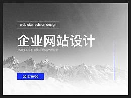 WEBSITE企业网站视觉设计