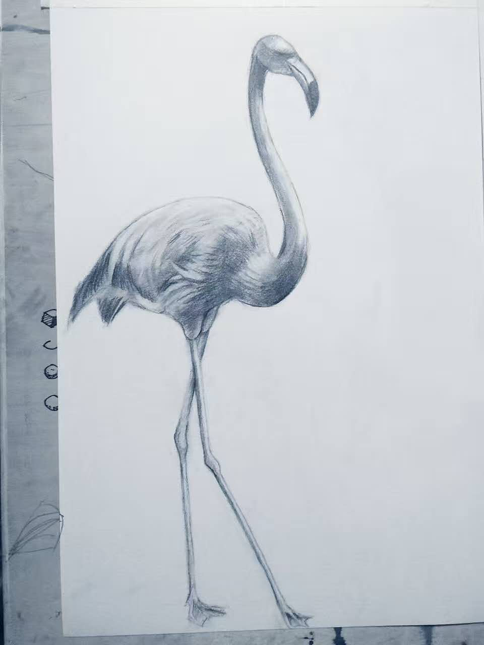 手绘学习历程