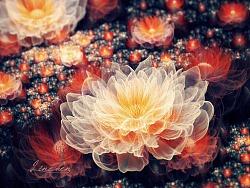 一花一世界 万物皆分形 系列1 (fractal art flowers)
