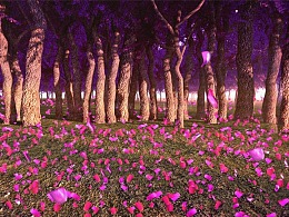 桃花林梦幻素材,粉色花瓣,浪漫全息投影素材