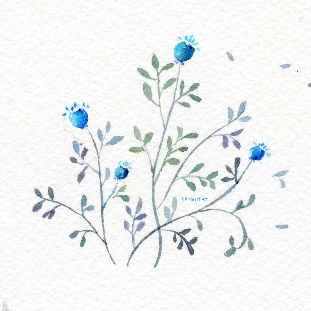 【小熊猫】水彩手绘花卉植物水彩插画教程小清新卡通插画的练成手帐手