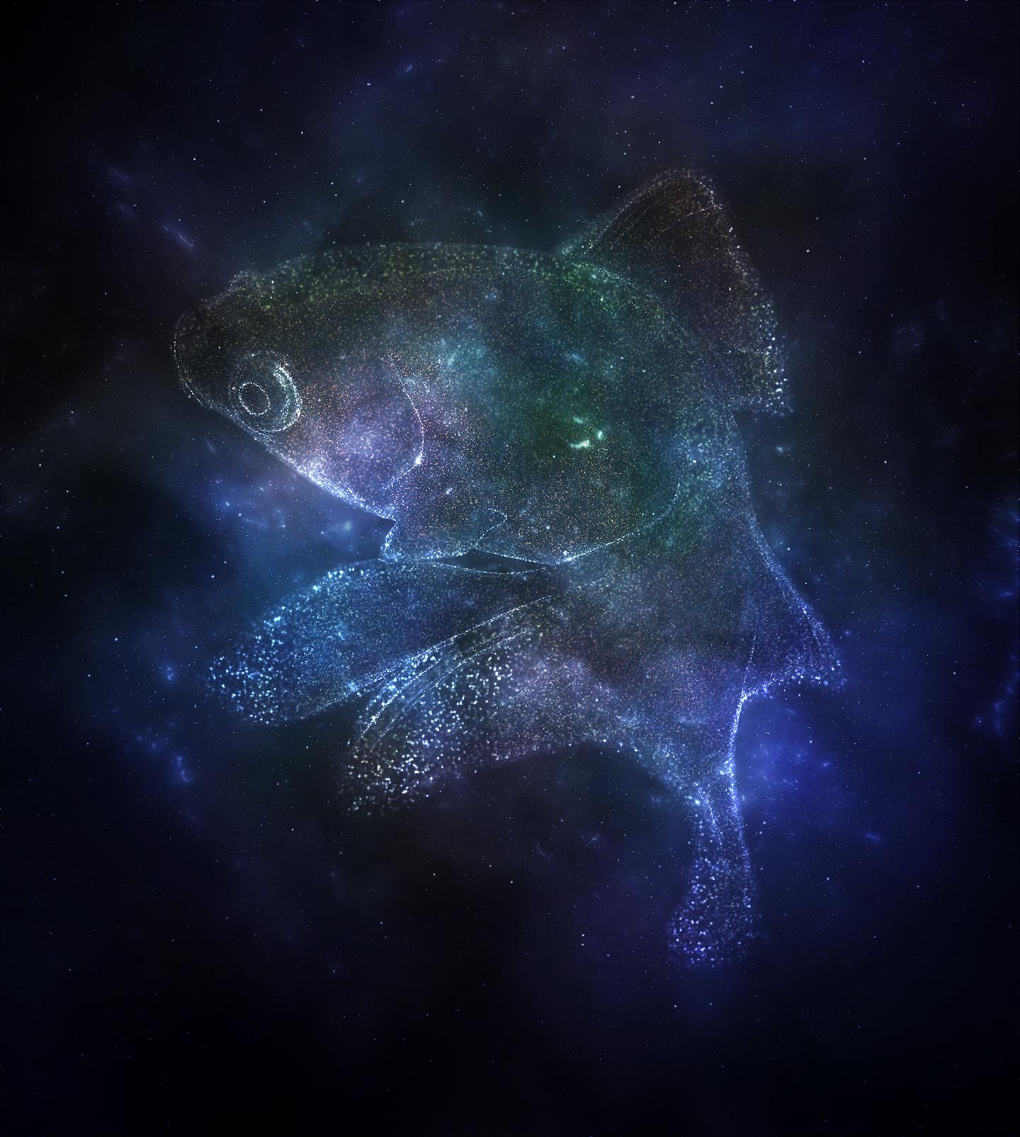 查看《ps特效动作下载_国外ps特效动作下载_ps动作特效百度网盘_银河特效_ps怎么做旋转动画特效》原图,原图尺寸:1440x1605