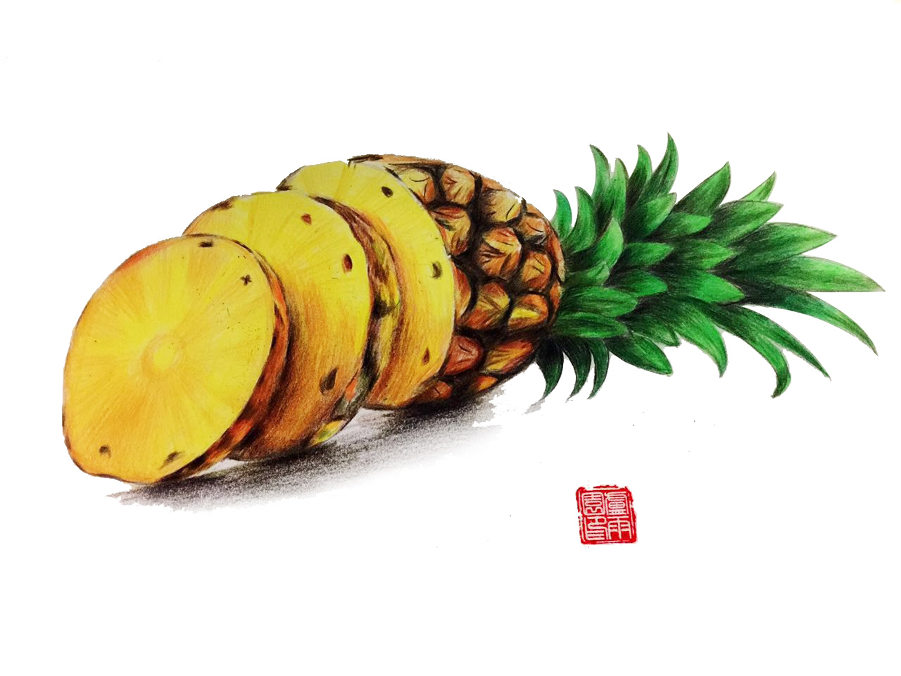手绘水果菠萝