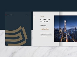 TPG金融商务品牌VI设计