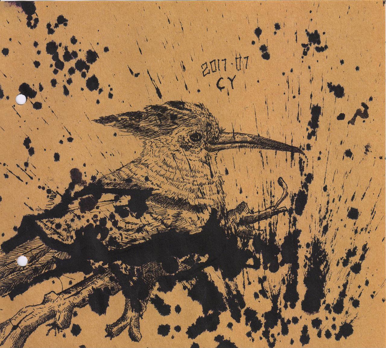 cy手绘-鸟类蘸水画