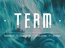 字体练习-| TERM | FREE FONT