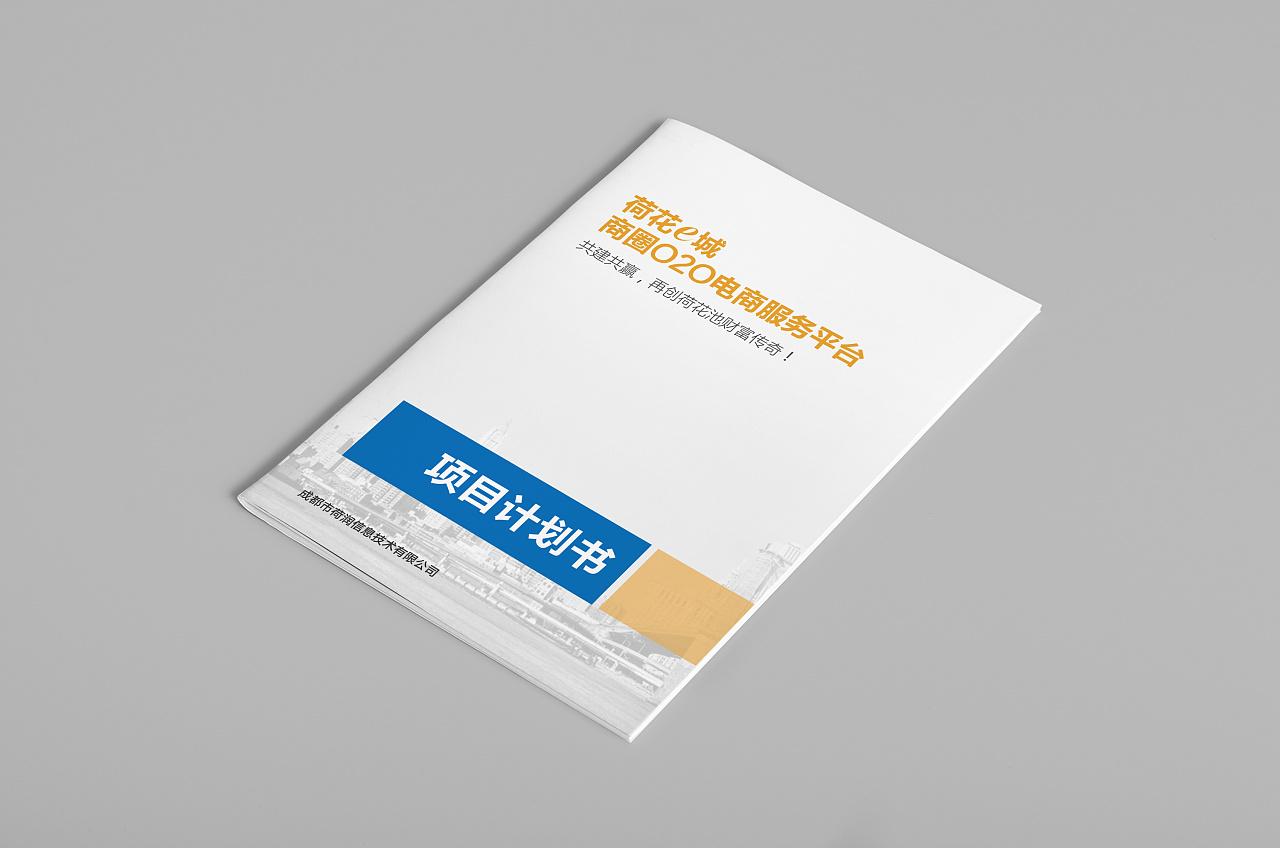 电商服务平台项目计划书图片
