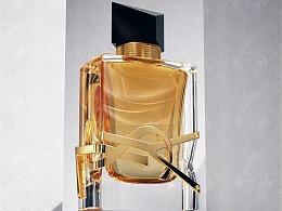 C4D圣罗兰香水渲染