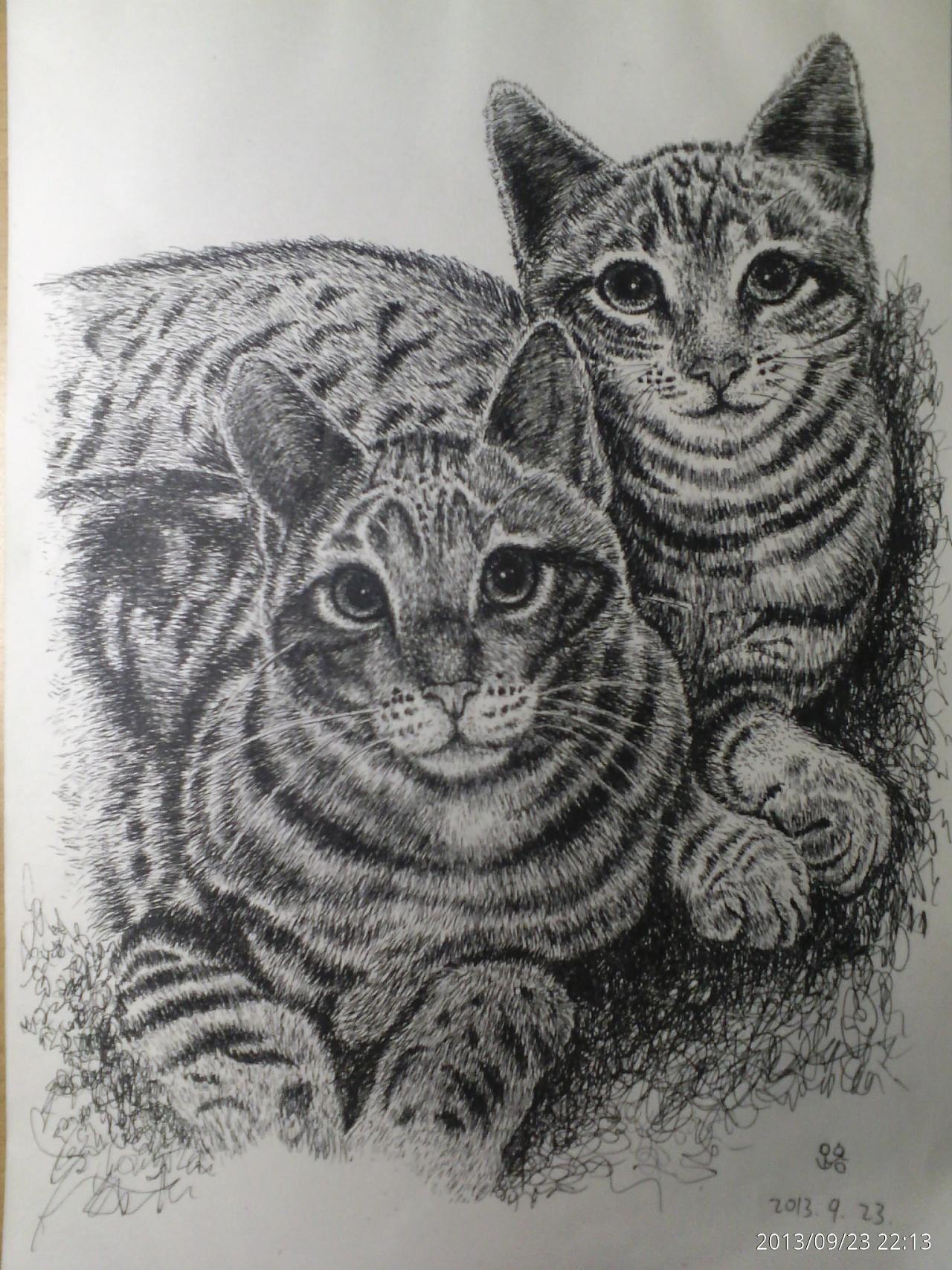 动物类钢笔画*临
