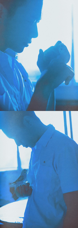 查看《NANTAI BLUE 南泰蓝》原图,原图尺寸:1600x4668