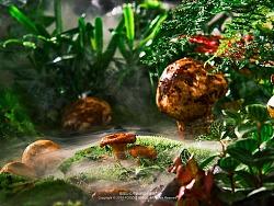 外婆小院——云南菜