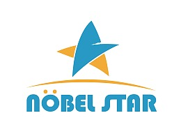 Nobel star Logo提案设计