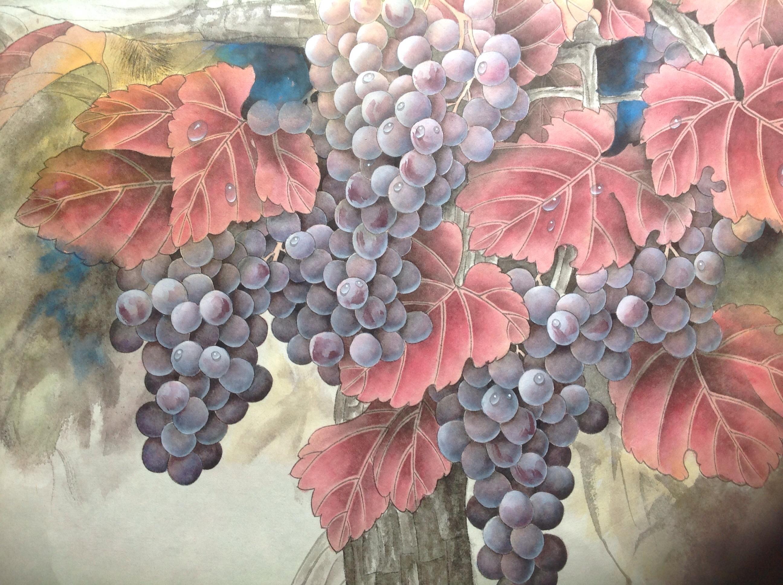汪林工笔画葡萄