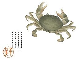 【东海现捞生鲜】蟹田新地