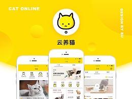 宠物app-云养猫 2017年9月