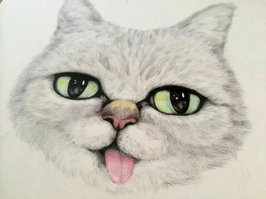 彩铅手绘猫星人绘画过程(原创)|商业插画|插画