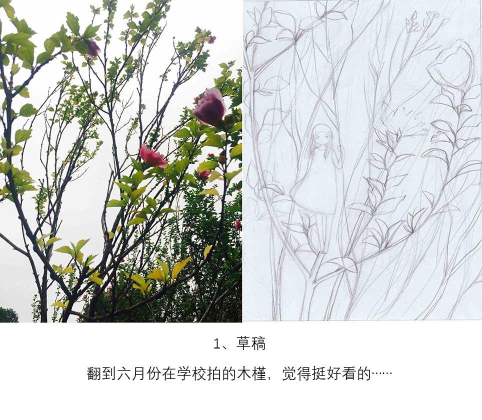 木槿花枝~附过程