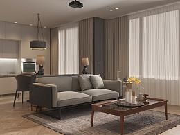 瑞士钟表大亨常年住单身公寓,只为…I日内瓦·罗纳8号