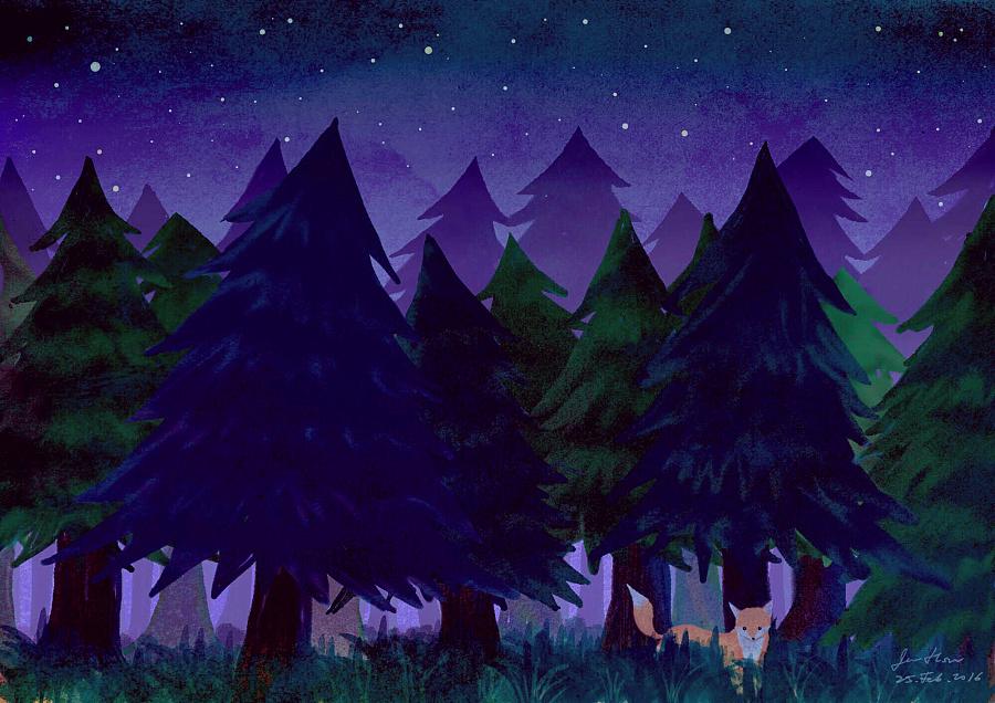 漫步夜晚的森林