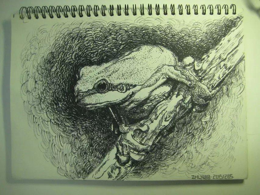 一些恐龙与 昆虫 速写 纯艺术 zhl1988 原创设计